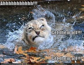 Ahhhhhhhhhhh!!! Get them off!!! Get them off!!!