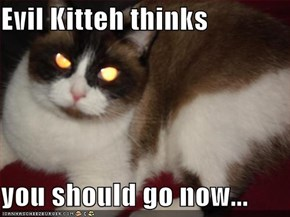 Evil Kitteh thinks  you should go now...