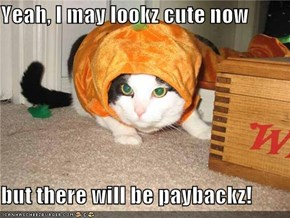 Yeah, I may lookz cute now  but there will be paybackz!