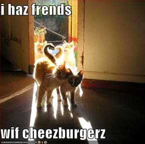 i haz frends  wif cheezburgerz