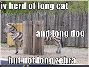 iv herd of long cat and long dog  but not long zebra