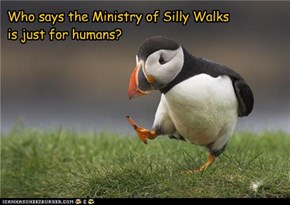 Who says the Ministry of Silly Walks is just for humans?