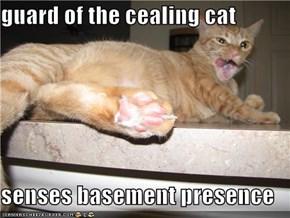 guard of the cealing cat  senses basement presence