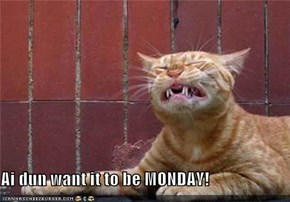 Ai dun want it to be MONDAY!