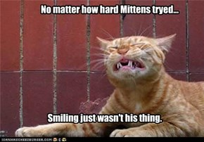 No matter how hard Mittens tryed...