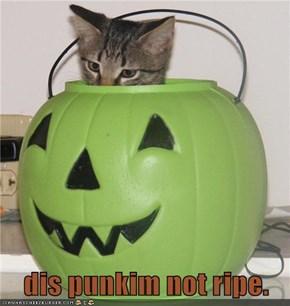 dis punkim not ripe.