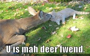 U is mah deer fwend.