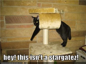 hey! this isn't a stargatez!