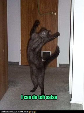 I can do teh salsa