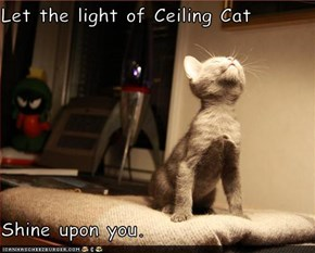 Let the light of Ceiling Cat  Shine upon you.