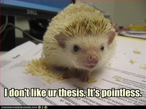 I don't like ur thesis. It's pointless.