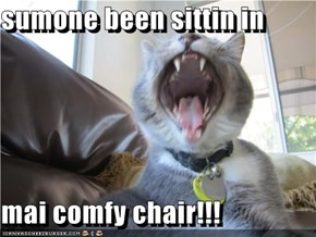 sumone been sittin in  mai comfy chair!!!