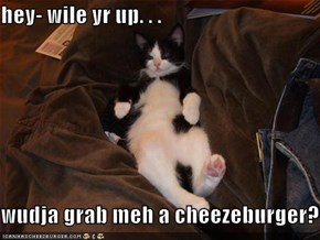 hey- wile yr up. . .  wudja grab meh a cheezeburger?