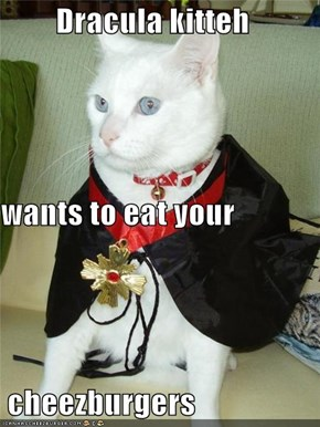Dracula kitteh wants to eat your  cheezburgers