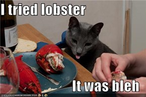 I tried lobster  It was bleh