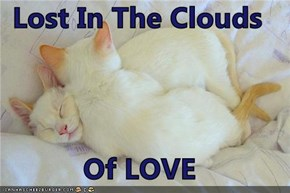Lost In The Clouds  Of LOVE