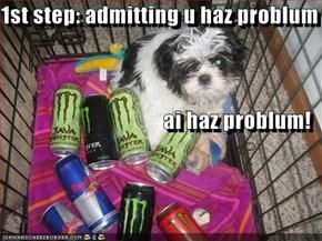 1st step: admitting u haz problum ai haz problum!