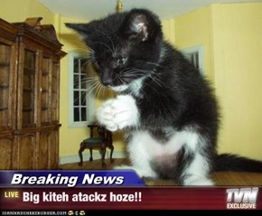 Breaking News - Big kiteh atackz hoze!!