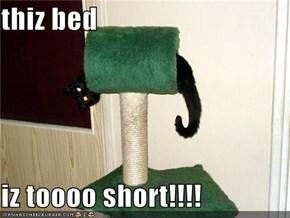 thiz bed  iz toooo short!!!!