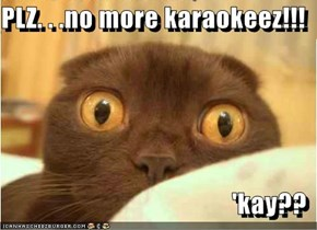 PLZ. . .no more karaokeez!!!  'kay??