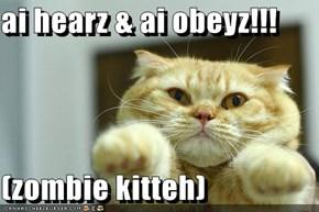 ai hearz & ai obeyz!!!  (zombie kitteh)