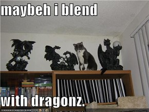 maybeh i blend  with dragonz.