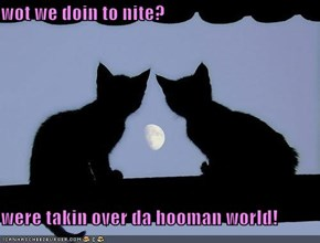 wot we doin to nite?  were takin over da hooman world!