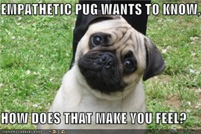 EMPATHETIC PUG WANTS TO KNOW,  HOW DOES THAT MAKE YOU FEEL?