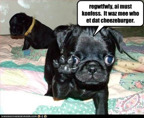 regwtfwly, ai must konfess.  It waz mee who et dat cheezeburger.