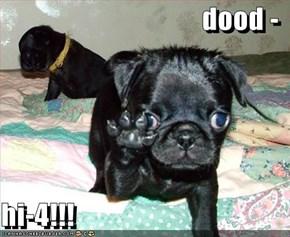 dood -  hi-4!!!