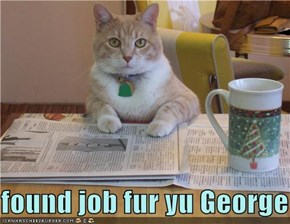 found job fur yu George