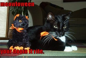 meowloween  your dooin it rite.