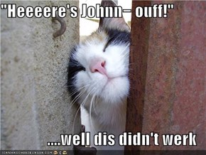"""Heeeere's Johnn− ouff!""  ....well dis didn't werk"
