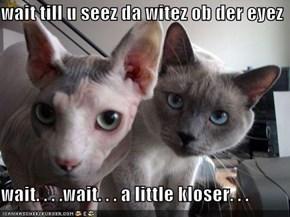 wait till u seez da witez ob der eyez  wait. . . .wait. . . a little kloser. . .