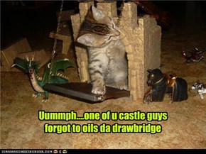Uummph....one of u castle guys forgot to oils da drawbridge