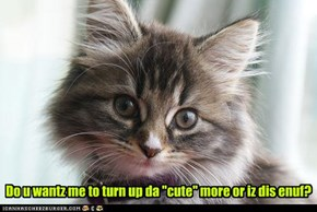 "Do u wantz me to turn up da ""cute"" more or iz dis enuf?"
