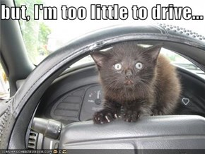 but, I'm too little to drive...