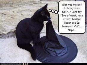 """Wat waz te spell to bringz Her bak?...? Lets try """"Eye of newt, nose of bat, beddur lissen cos Iz Basement Cat"""".... Nope..."""
