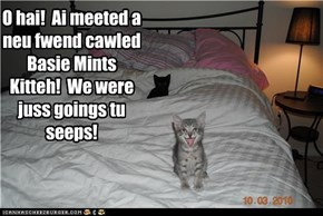 Oh oh! Basement Kitteh Up Tu No Gud!