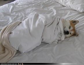 Itz neber 2 erly fer bedtime