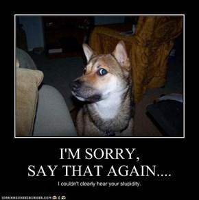 I'M SORRY, SAY THAT AGAIN....
