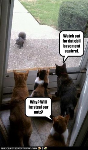 Watch out for dat ebil basement squirrel.