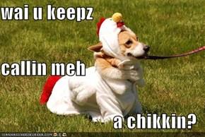 wai u keepz callin meh a chikkin?