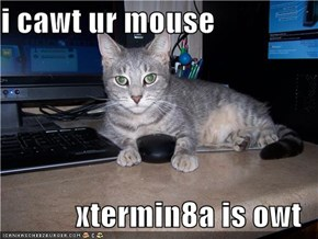 i cawt ur mouse  xtermin8a is owt