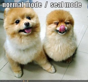 normal mode  /  seal mode