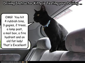 Driving Instructor Kitty is Testing your Driving ...