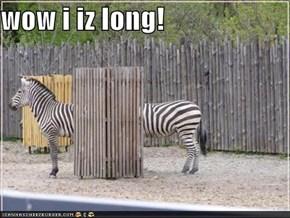 wow i iz long!