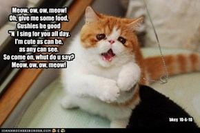 Meow, ow, ow, meow!