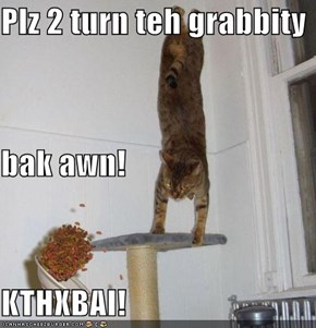 Plz 2 turn teh grabbity bak awn! KTHXBAI!