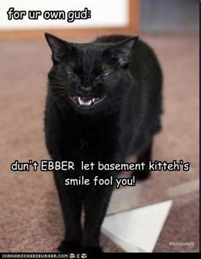 dun't EBBER  let basement kitteh's  smile fool you!